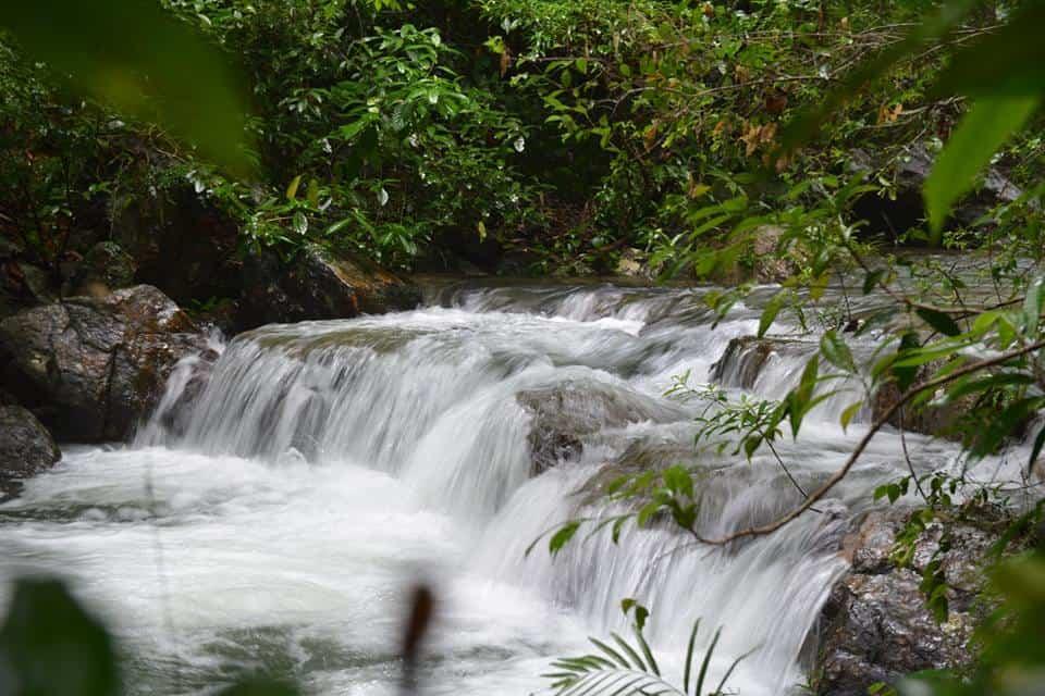 thác nhỏ - phongnhadiscovery.com