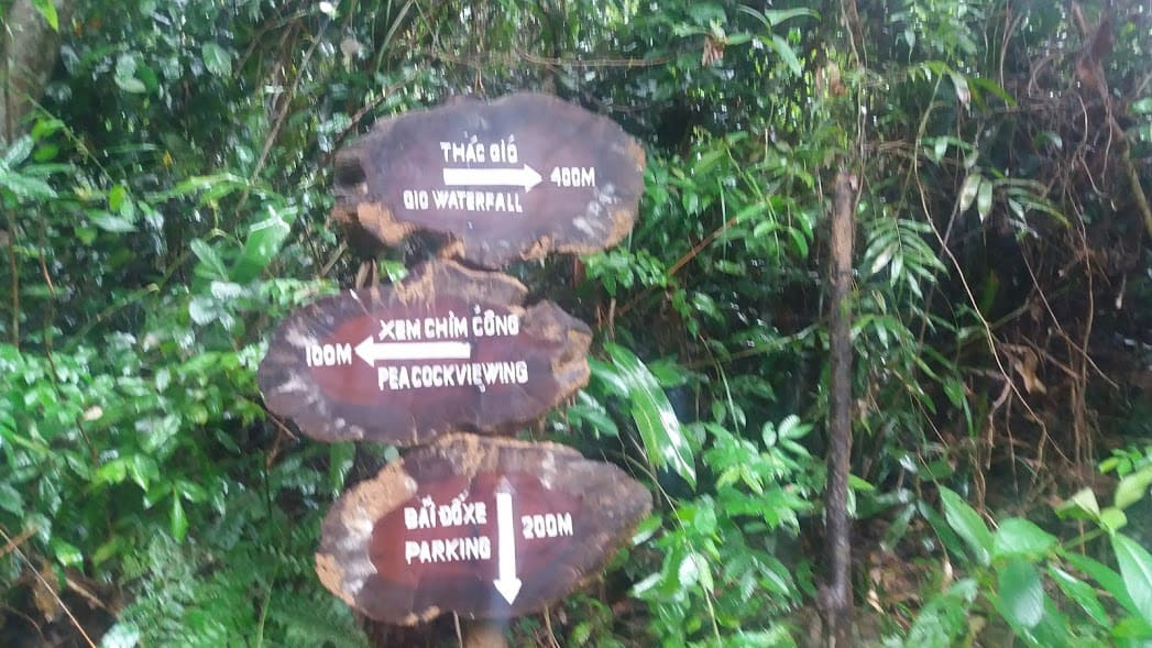 đường đi ở vườn thực vật - phongnhadiscovery.com