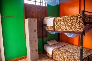 Easy Tiger Hostel- Phong Nha